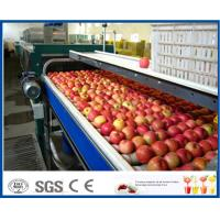 Fruit Juice Production Fruit And Vegetable Processing Device With SUS304 / SUS316 Steel Manufactures