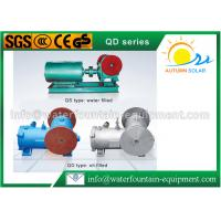 Underwater Swing Motor Cast Iron Water Pump Lightweight 50Hz Electricity Drive Manufactures