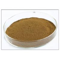 Oleuropein 20% Natural Olive Leaf Extract For Dietary Supplement Brown Powder Manufactures