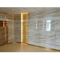 UV Coating Solid Pvc Waterproof Bathroom Wall Panels Exterior Marble Color Manufactures
