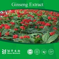 Panax Ginseng extract powder from stem and leaf Manufactures