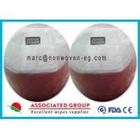 Sanitary Disinfectant Wet Wipes Biodegradable Anti Bacterial Healthy Manufactures