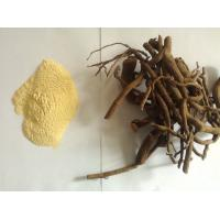 Man sex penis greater herb medecine 30% -70% kava root extract powder Manufactures