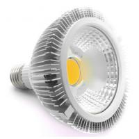 PAR38 LED spotlight COB Epistar LED chip Manufactures