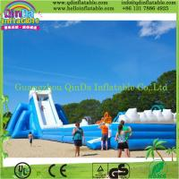 QinDa Inflatable cartoon inflatable slide and bouncer, inflatable bouncy slide for sale Manufactures