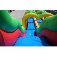 Quality Rainbow colors Giant adult inflatable water slide pool game with best material1000D Vinyl for sale