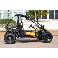 200CC Go CVT Go Kart Automatic Transmission With Sport Style And Cover Manufactures