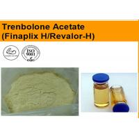 CAS 10161-34-9 Trenbolone Acetate Injection Oil Liquid Muscle Growth Supplements Manufactures