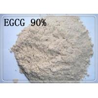 China 989 51 5 Green Tea Extract Epigallocatechin Gallate EGCG 90 Assay Pharmaceutical on sale