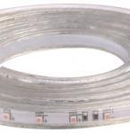 High Brightness 2835 60 High Voltage LED Strip Tape Lighting 110V - 220V IP67
