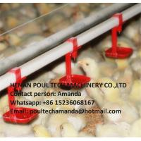 Chicken Farming Silver Steel Automatic Broiler Deep Litter System with Automatic Feeding&Drinking System Manufactures