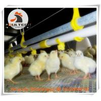 Poultry Farming Broiler Deep Litter System & Plastic Slatted Floor Raising System with Feed Pan Line & Drinking Line Manufactures