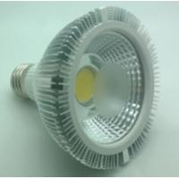COB LED PAR30 12W light Manufactures