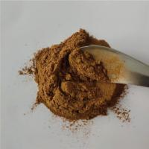 China Medicine Grade Anti-inflammatory Cactus Extract Powder on sale