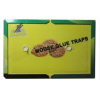 Mouse Glue Trap Board Extra Sticky Rodents and Peanut Butter with 21.5x16.5cm Capture Area Manufactures