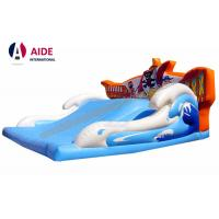 Wide Children Blow Up Water Slide , Childrens Outdoor Playsets With Pirate Logo Manufactures