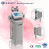 Buy cheap Hot New Cryolipolysis Lipo Slimming Fat Freezing Machine from wholesalers