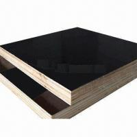 Black Brown Filmed Face Construction Plywood, 12mm, 15mm, 18mm, 21mm Thickness  Manufactures