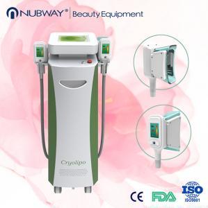 cryolipolysis machine ce Manufactures