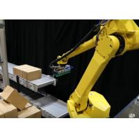Robot Palletizing System / Automatic Palletizer Machine For Sheet Materials Stacking Manufactures