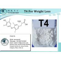 T4 Fat Burning Steroids Powder Levothyroxine Sodium T4 For Weight Loss Manufactures