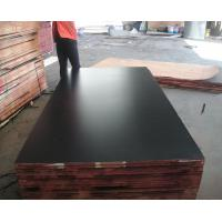 building materials & 1220*2440, 1250*2500mm marine plywood & 18mm wbp film faced plywood Manufactures