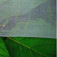 China Overhead Crop Netting,Citrus Netting,Fruit Tree Netting on sale