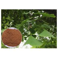 Natural Plant Extract Prevent Cardiovascular diseases Ginkgo Biloba Leaf Extract EP Grade Manufactures
