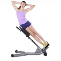 Portable Power Exercise Equipment High Density Sponge Lower Back Extension Bench  Manufactures