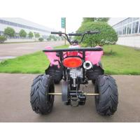 Mini 125CC One Seat Children ATV Cars , 4 Wheel 2 Stroke ATV Manufactures