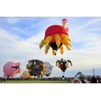 Quality Colorful Outdoor Inflatable Hot Air Balloon For Tourism , Hot Air Balloon Flights for sale