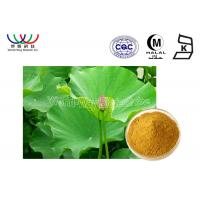 Health Care Lotus Herbal Products , Organic Herbal Extracts Powder Food Grade Manufactures