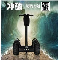 19 Inch Tire Two Wheel Electric Chariot Scooter Off Road Segway Outdoor Sports Manufactures