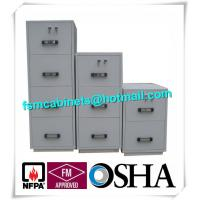 High Security Fire Resistant Fireproof Storage Cabinets For Home / Hotel / Banks Manufactures