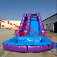 Inflatable Purple Passion Water Slide Inflatable Pool Slides Manufactures