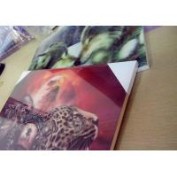 PET MDF back MDF 3D picture for home decoration Manufactures