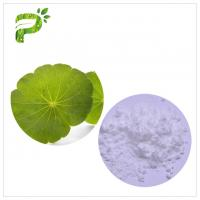Natural Cosmetic Plant Extract Centella Asiatica Leaf Extract For Skin Scars Repairing Manufactures