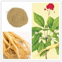 Quality Ginsenoside Rg3Rh2 Natural Cosmetic Ingredients 14197-60-5 Anti Cancer for sale