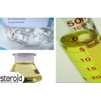 Male Enhancement Raw Boldenone Steroids Powder Boldenone Cypionate CAS 106505-90-2 Manufactures