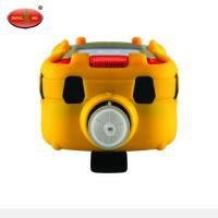 RAE Systems New MultiRAE Lite Gas Multi-gas Leak Detection detector Manufactures