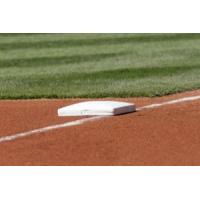 high qulaity artificial grass for baseball Manufactures