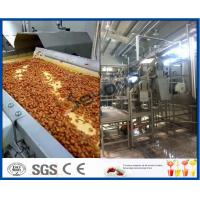 Fruit Processing Plant Juice Making Machine Orange Juice Extractor With Washing / Pulping System Manufactures