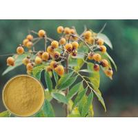 Yellow Brown Powder Soapberry Extract Cosmetic Grade For Bath Cream / Shampoo Manufactures