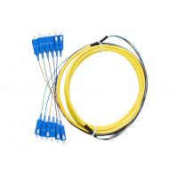 12 core , 24core Indoor Fiber Optic Patch Cord with SC connector Manufactures
