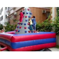 Sporting Inflatable Rock Climbing Wall Huge Colorful Lead Free For Adults Manufactures
