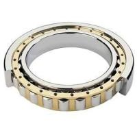 stainless Single Row Sealed NJ Precision Crossed anti friction Cylindrical Roller Bearings Manufactures