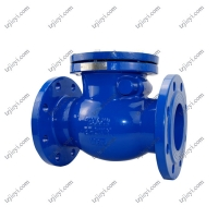 China Standard natural gas cast iron swing check valve ANSI 150 flange connection on sale