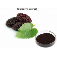 Mulberry Fruit Extract Anthocyanin Extract Powder Improving Reproductive Health Manufactures