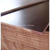 Plywood Water Proof/ Black/ Brown Film Faced Plywood Manufactures