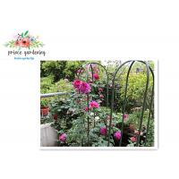 Nursery House Garden Stake Solid Frame Flower Support Ushape Pipe Manufactures